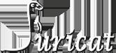 suricat-logo-moho